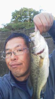 bass01結果.jpg